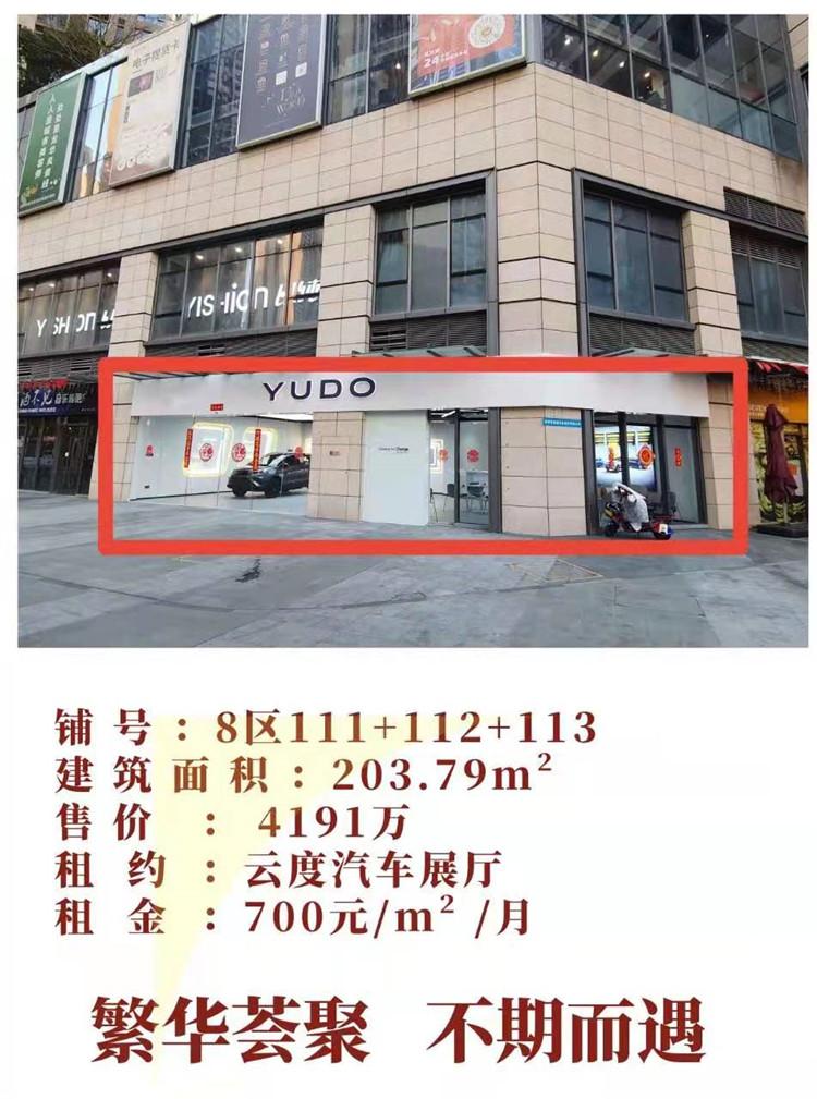 龙华壹城中心商铺